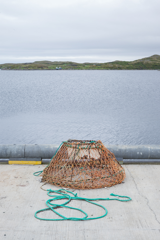 Crab trap. Goose Cove, Newfoundland 2016