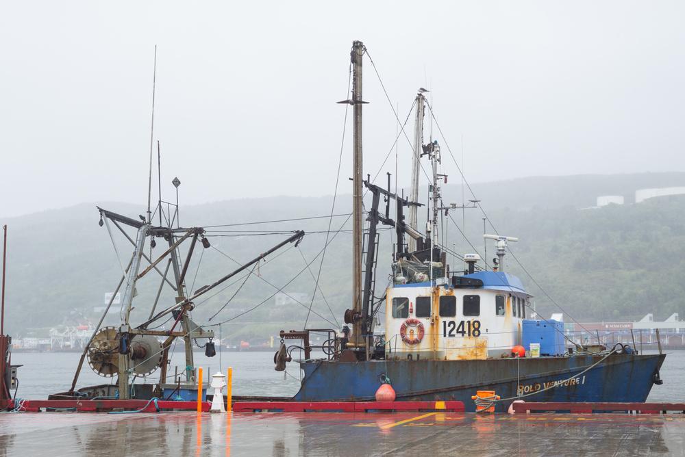 St. John's, Newfoundland 2016
