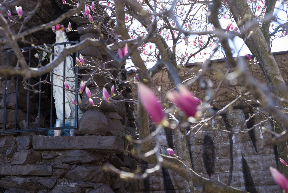 Wednesday. Easter 2016. East Williamsburg, Brooklyn
