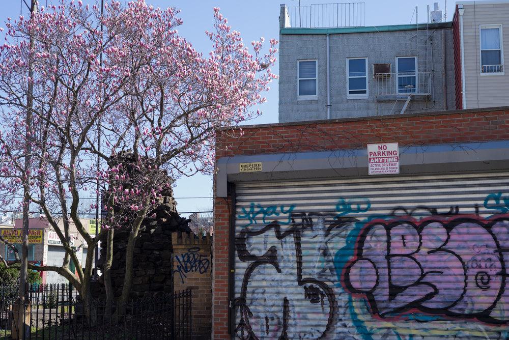 Tuesday. Easter 2016. East Williamsburg, Brooklyn