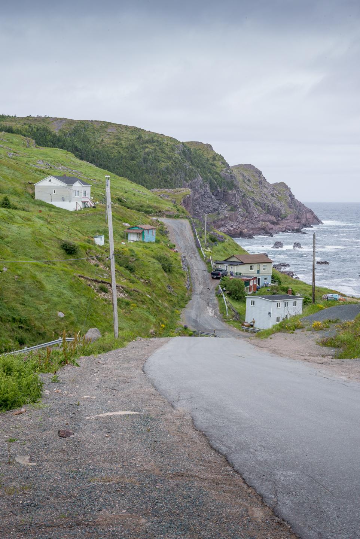 Redhead Cove, Newfoundland 2016