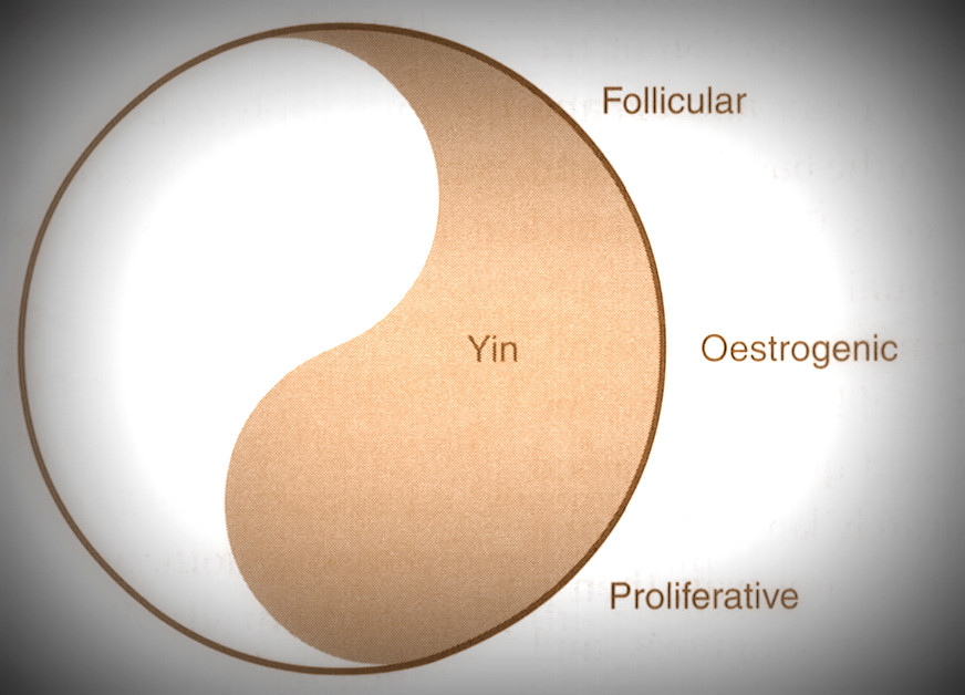 yin fertility.jpg