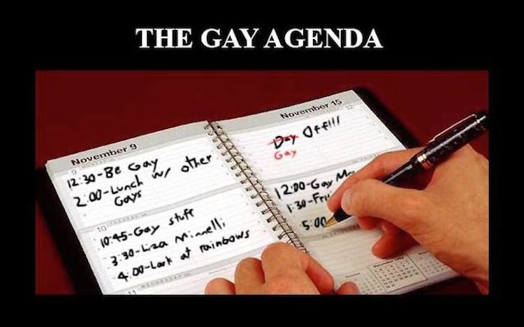 The Gay Agenda. To be fair, Liza Minelli is pretty fab.