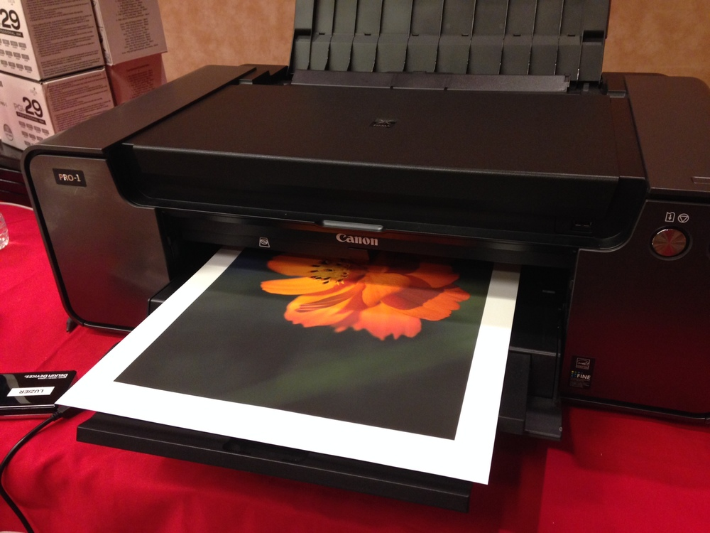 Canon Pixma Pro 1 printer printer printing my image 'Golden Flower""