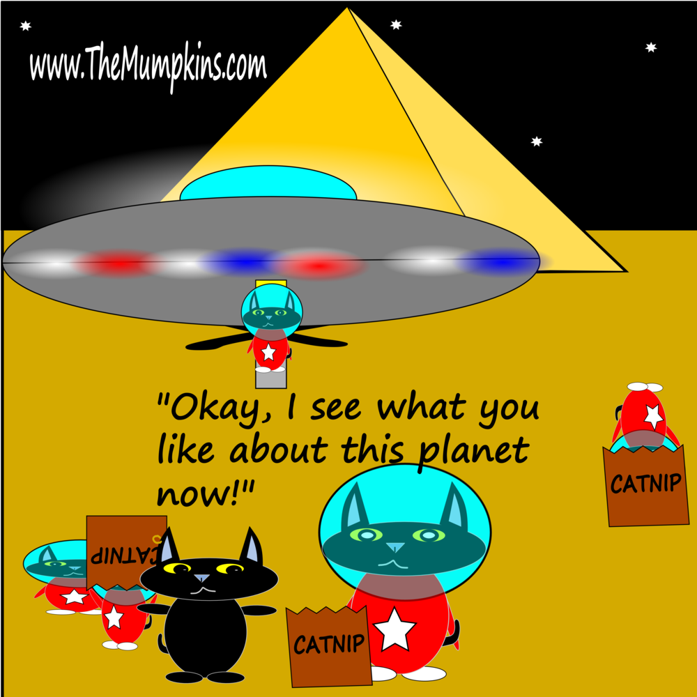Spacecats find the catnip.png