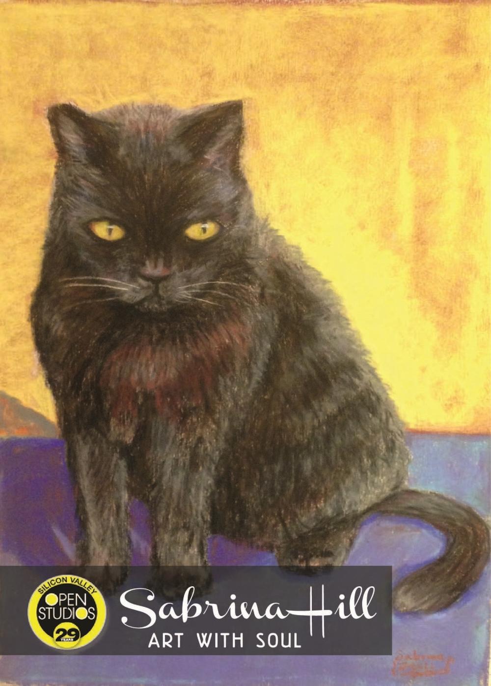 Cat 2015.jpg