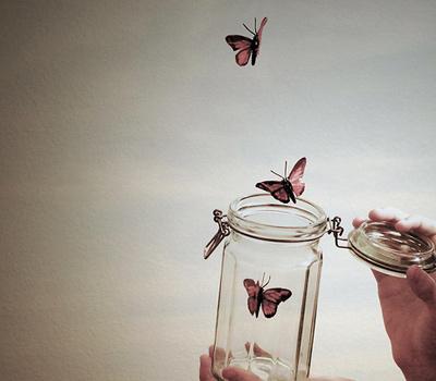 butterflies-1 2.jpg