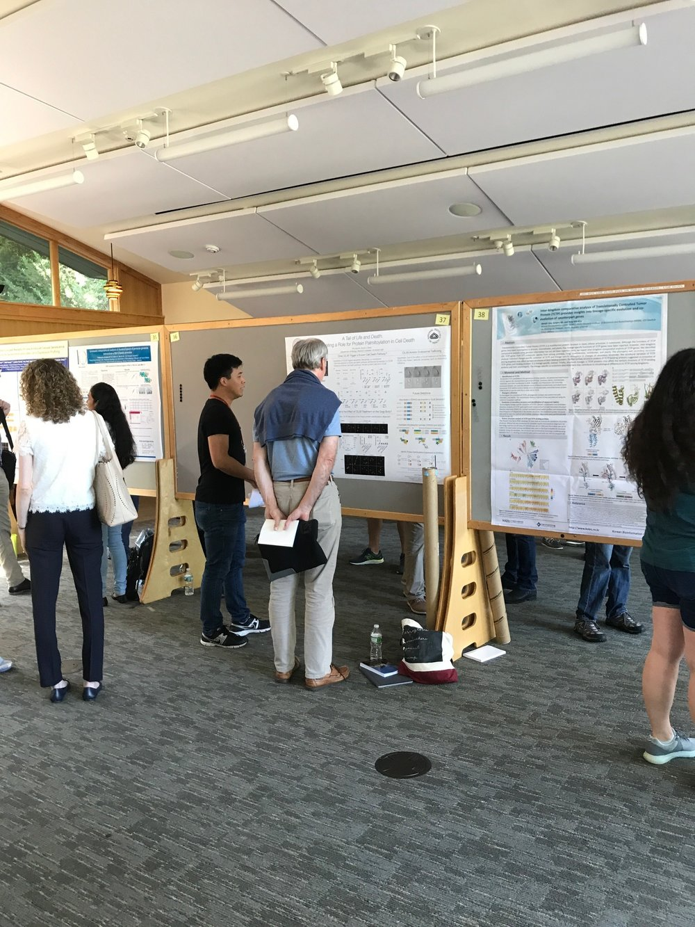 Pin-Joe describes his latest results - CSHL Cell Death Meeting, 16 Aug 2017