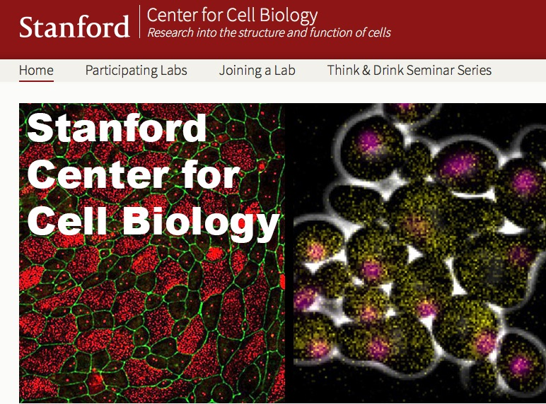 We are excited to join with our colleagues in launching the Stanford Center for Cell Biology - Website here!
