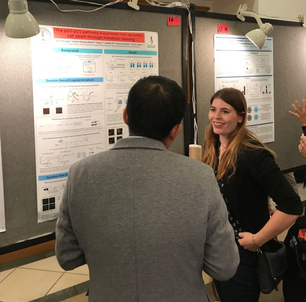 Amy presents her poster - Stanford Cancer Biology Retreat, San Jose, 15 Sep 17