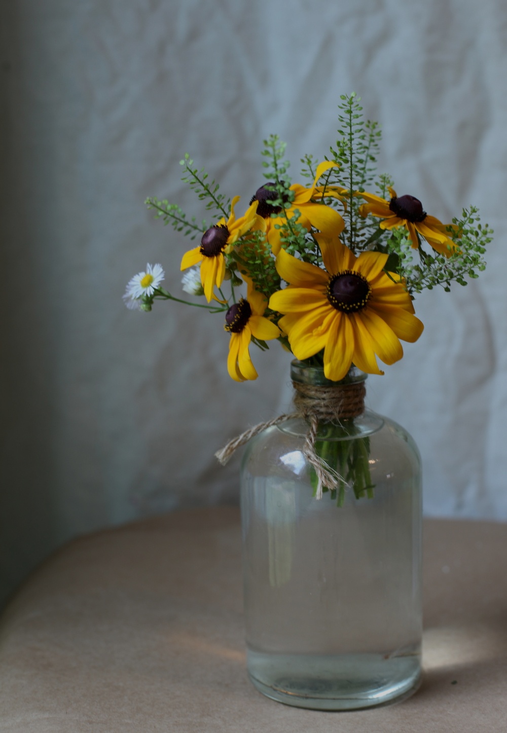 blackeyed susans.jpg
