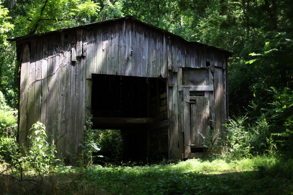 Old Barn, Marion County Tennessee
