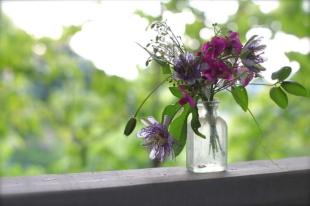 passion flower arrangement by Maggie Pate