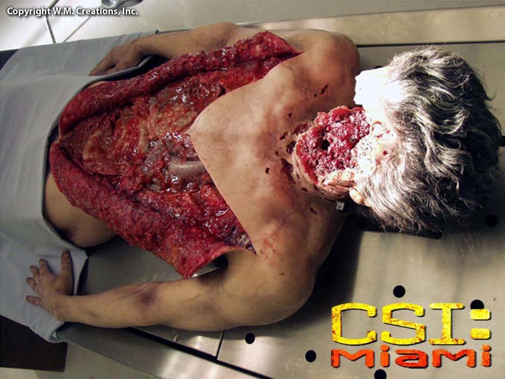 csim26.jpg