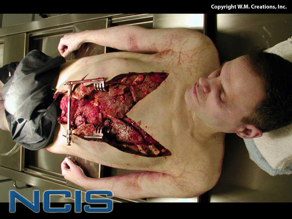 ncis01.jpg