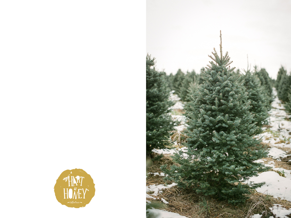 Free Digital Download Christmas Card by Hart & Honey