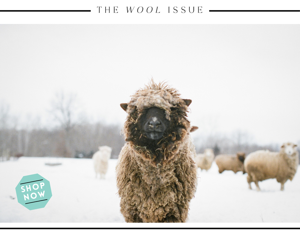 STUDY : The Wool Issue