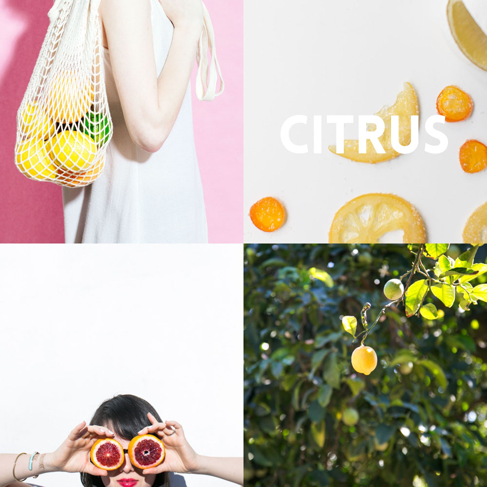 the citrus issue | hart+honey