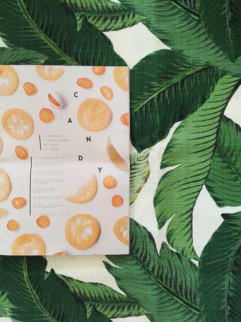 Candied Lemons / Hart & Honey Collective / The Citrus Issue of STUDY Journal / for the nature loving city dweller