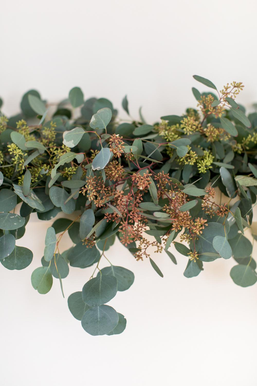 Hart+Honey_Eucalyptus05.jpg