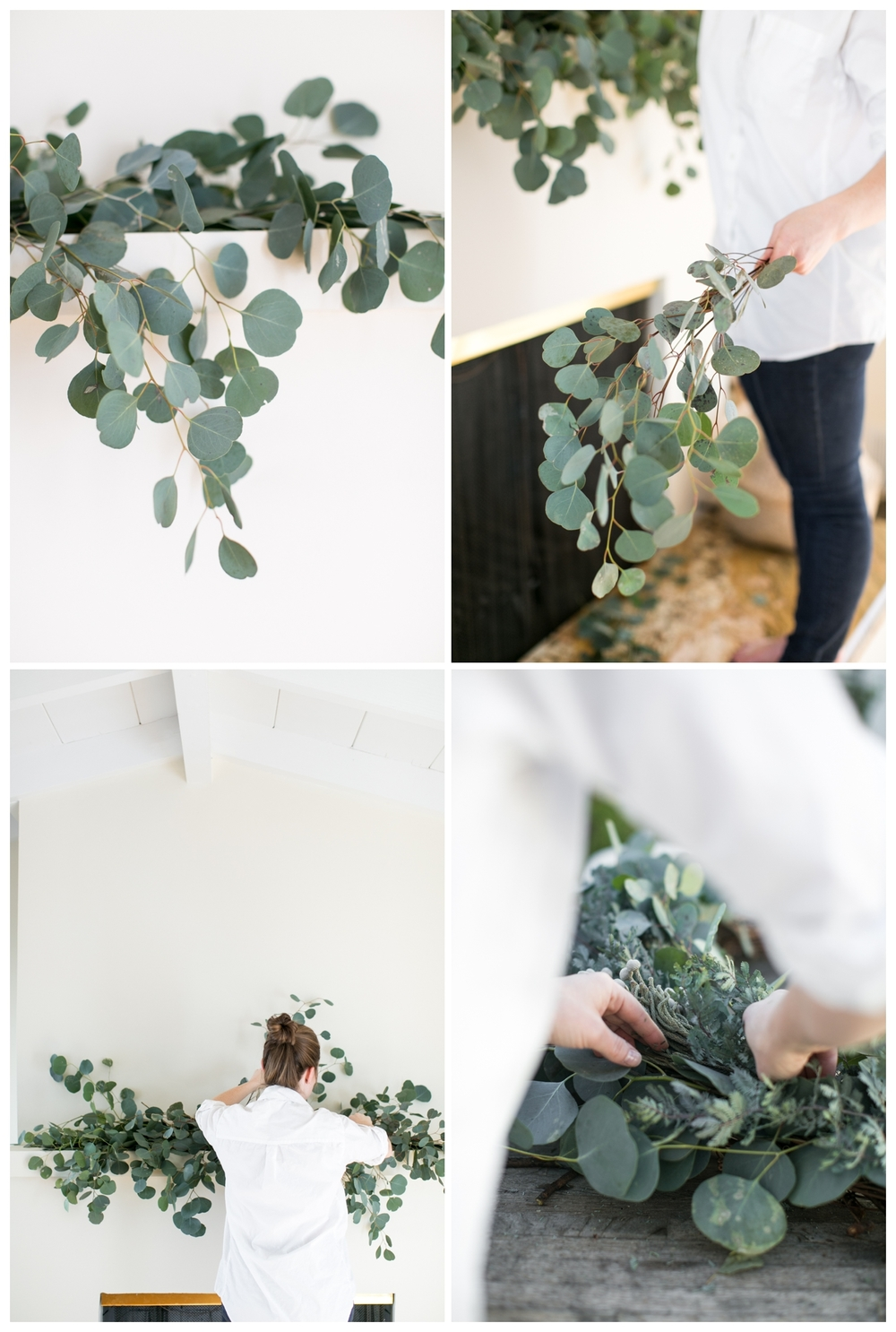 Hart+Honey_Eucalyptus_001.jpg
