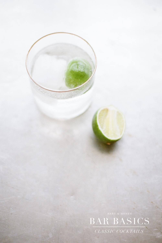 home bar, Gin & Tonic