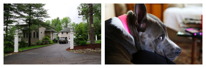 PicMonkey Collage-5.jpg