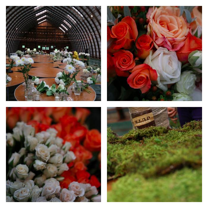 PicMonkey Collage-15.jpg
