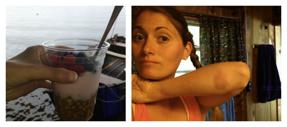 I had granola almost every morning after my run. The picture on the right shows the bruise I got after diving off the boat to rescue my dog, and when I came up out of the water, I hit the boat...