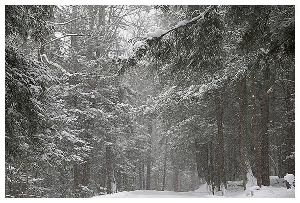 Deep-Creek-Winter-Weekend_0018.jpg