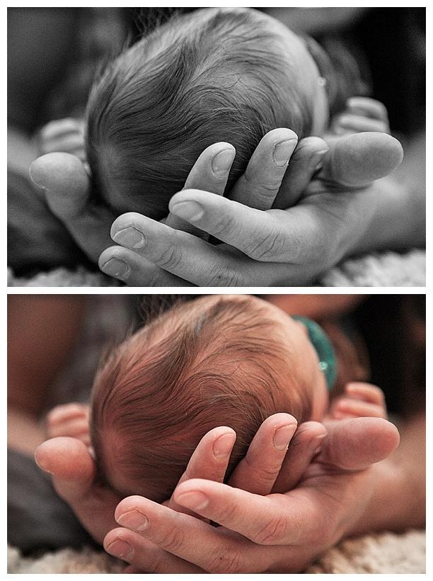 Wayne-Newborn-January_0028.jpg