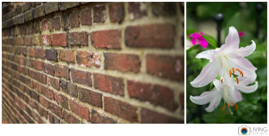 living-radiant-photography-erica-jim-annapolis-engagement-session_0030.jpg