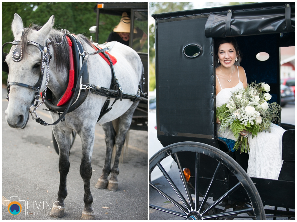 sara+chris-simons-wedding-belleville-winery-pa-living-radiant-photography_0024.jpg