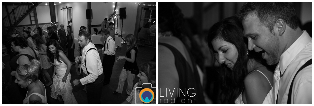 sara+chris-simons-wedding-belleville-winery-pa-living-radiant-photography_0060.jpg