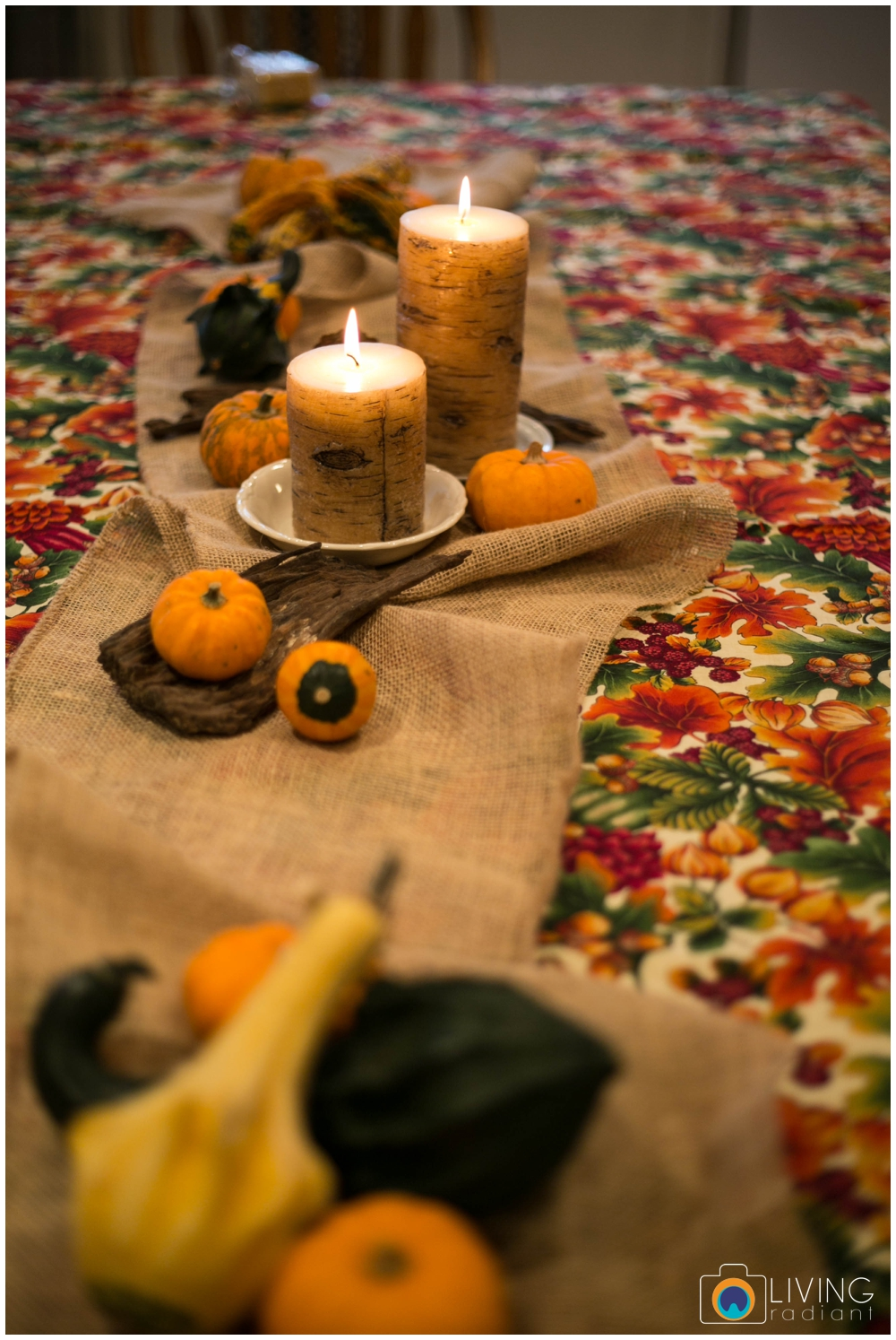 hoffman-nolan-libous-thanksgiving-family-pumpkins-and-pinecones_0001.jpg