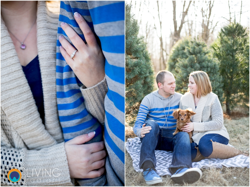 Amber-Chris-Christmas-Tree-Farm-Engagement-Session-Living-Radiant-Photography-maryland-best-photographers-outdoor_0005.jpg