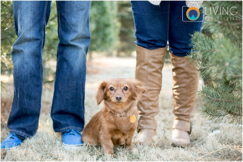 Amber-Chris-Christmas-Tree-Farm-Engagement-Session-Living-Radiant-Photography-maryland-best-photographers-outdoor_0013.jpg