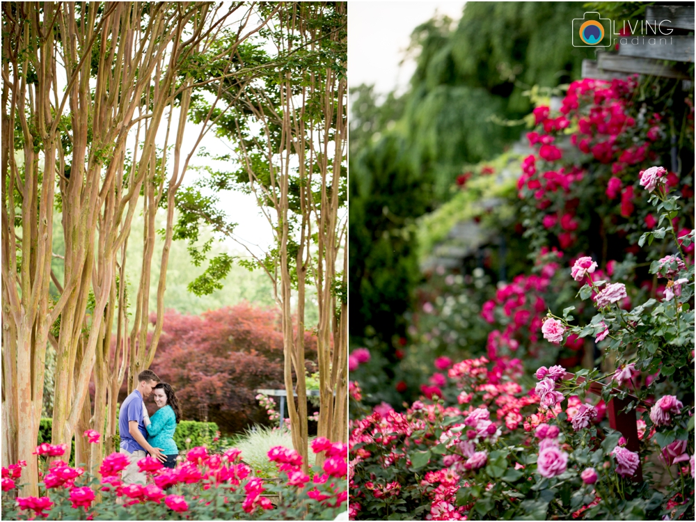 melissa-chris-brookside-gardens-engagement-session-outdoor-gardens-living-radiant-photography-maggie-patrick-nolan_0034.jpg
