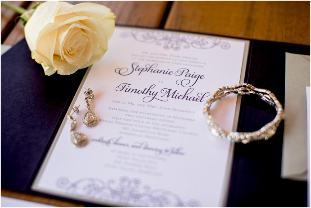 tim steph senkewicz hunt valley inn wedding living radiant photography photos_0019.jpg