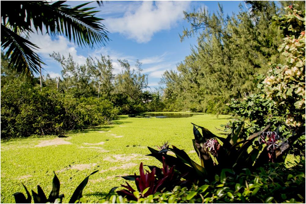 patrick-maggie-nolan-living-radiant-photography-travels-bahamastrip2016_0043.jpg