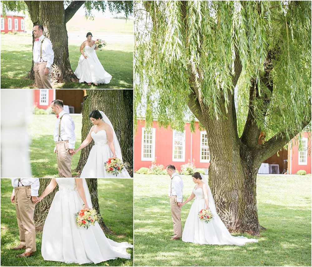 tina sean myers pond view farm outdoor mint pink wedding living radiant photography photos_0017.jpg