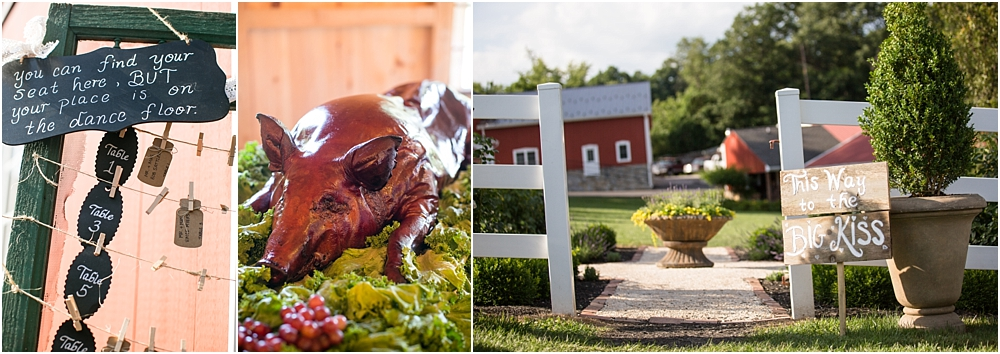 tina sean myers pond view farm outdoor mint pink wedding living radiant photography photos_0052.jpg