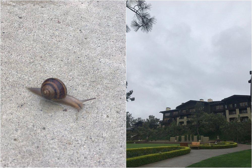 2018 San Diego Trip_0026.jpg