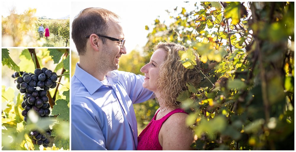 MichelleShaunBigCorkWineryEngagementSessionLivingRadiantPhotographyphotos_0008.jpg