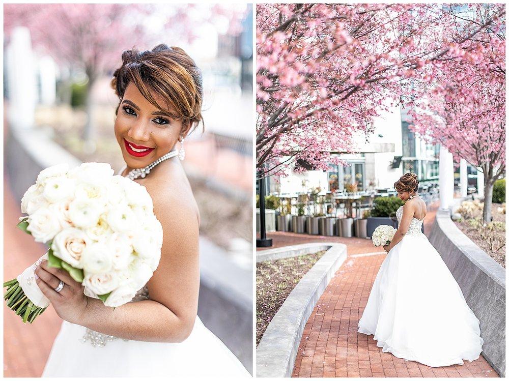Brooke Nick Celebrations at the Bay Wedding Living Radiant Photography_0033.jpg