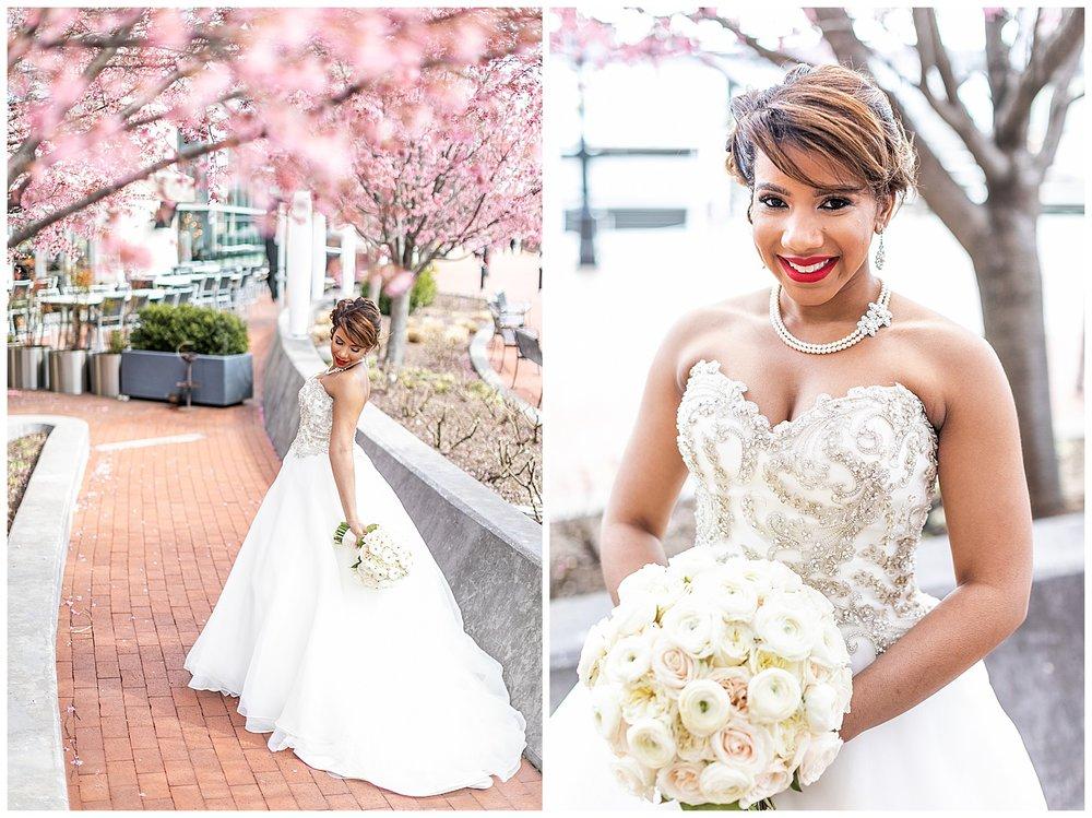 Brooke Nick Celebrations at the Bay Wedding Living Radiant Photography_0034.jpg
