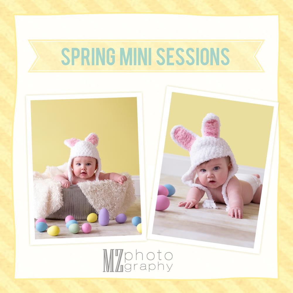 Spring Mini 3.jpg