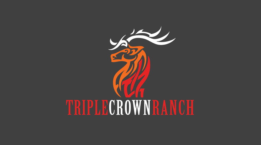The  Triple Crown Ranch  crew in Texas wanted a unique, beautiful and eye-catching logo. While the name itself has several underlying meanings, the 3-part elk on top really stands out and creates such a bold statement.