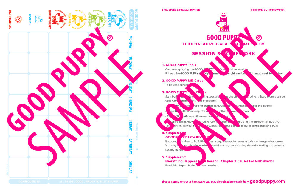 GoodPuppy-THERAPY-Streamlined_Toolkit-Full_Sample-19.jpg