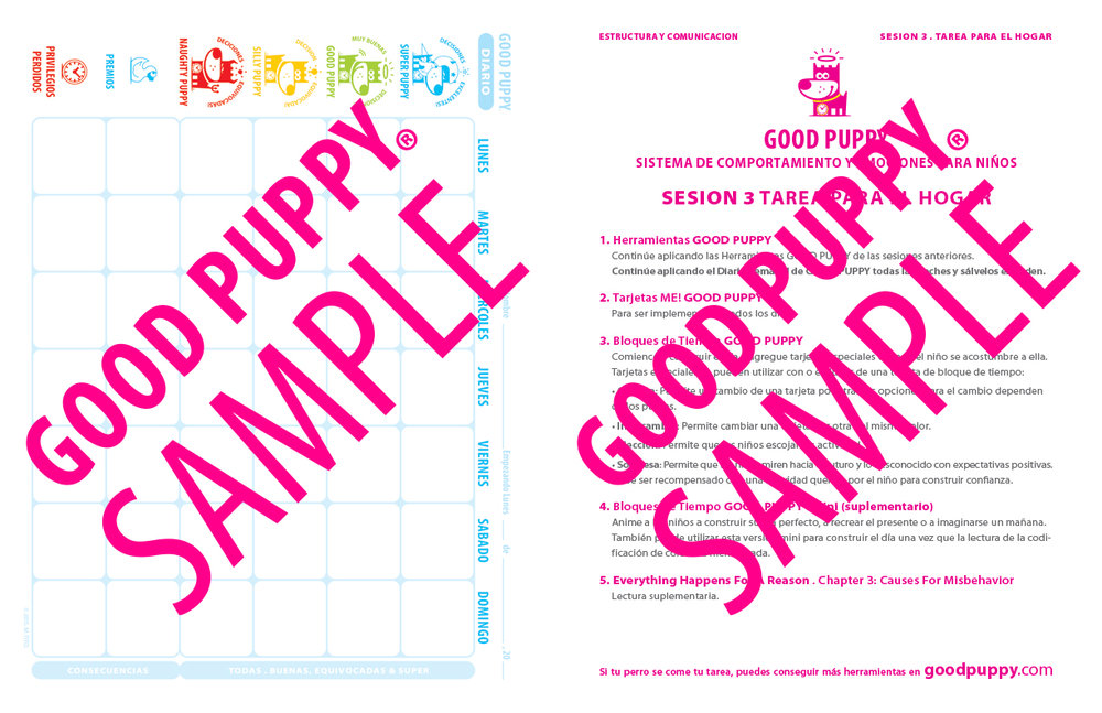 GoodPuppy-TERAPIA-KitDeHerramientas-Full_Sample-19.jpg
